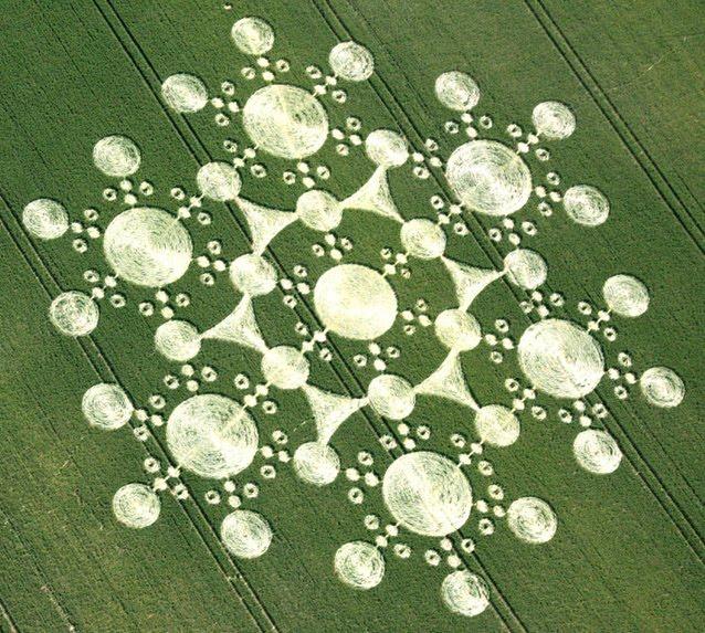 crop-circle-at-white-sleet-hill-near-mere-wiltshire-25th-june-2010