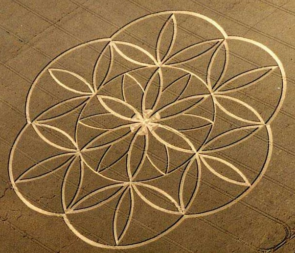 flower-of-lifce-crop-circle